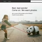 写真共有サービス「Flickr」