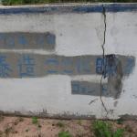 カンボジア 7日目 シェムリアップ (一之瀬泰造の墓)